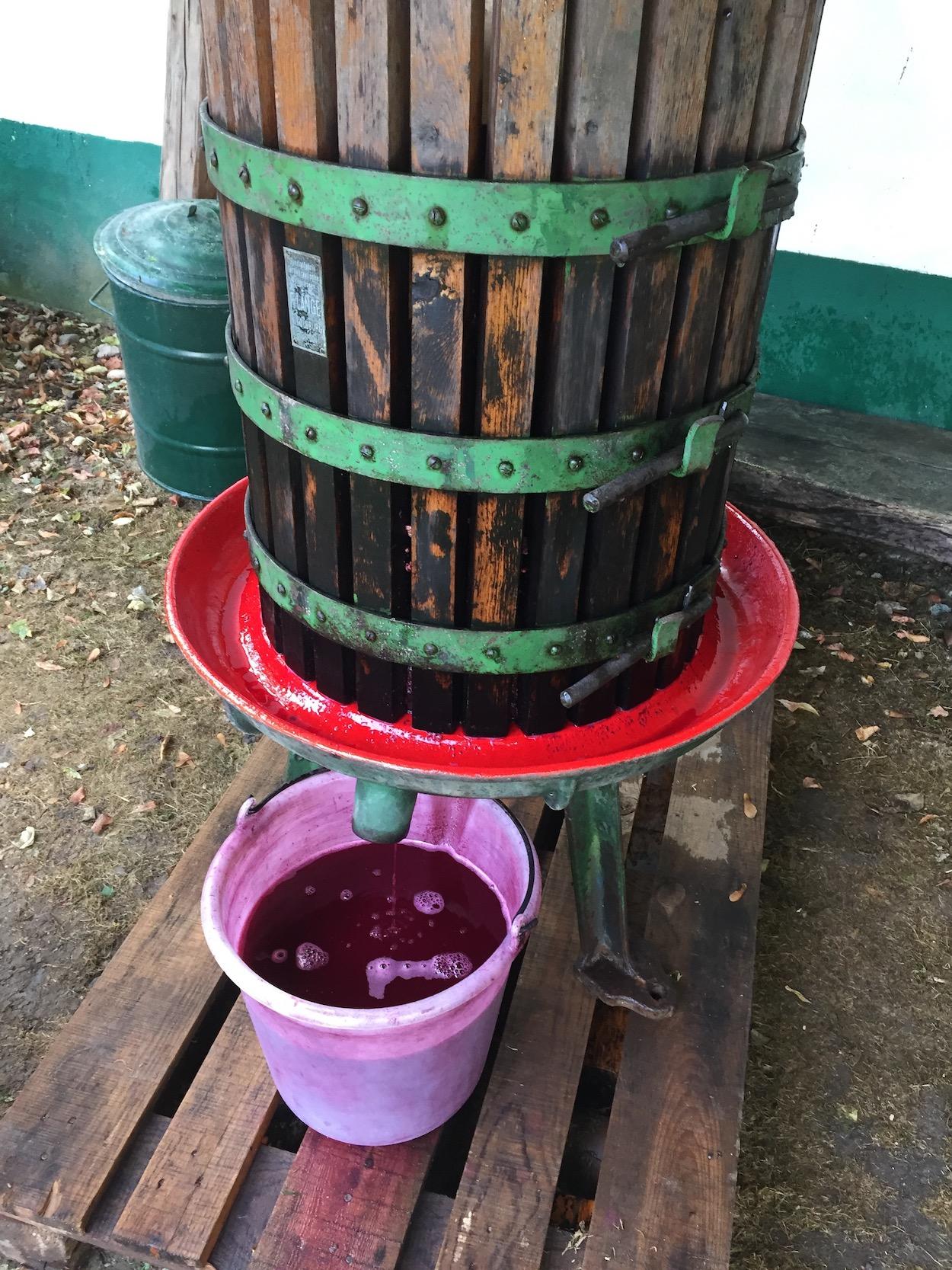 Handpresse für Wein